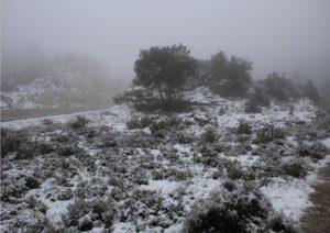 foto nieve
